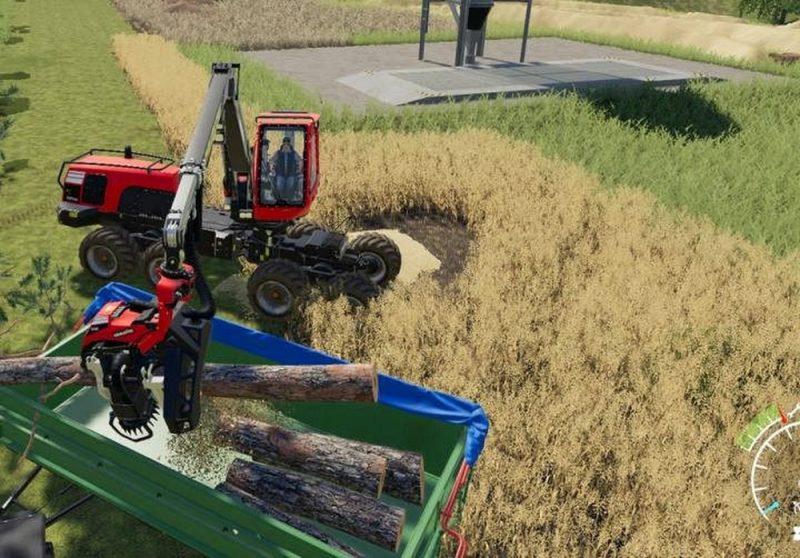 Лесозаготовка в Farming Simulator 19: Заготовка древесины и ее реализация